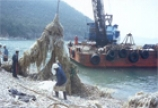 EcoStrategic - Coastal Cleanups for East Asia